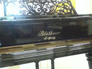 Blüthner polyester