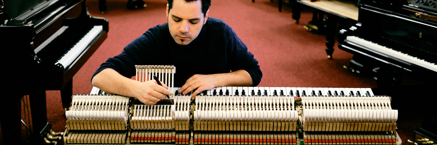 Van Dongen Piano's Pianostemmer 6 tim leguijt fotografie