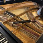 Pianostemmen / Wat doet de pianostemmer?